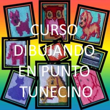 CURSO ONLINE PUNTO TUNECINO